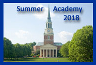NADSFL Summer Academy
