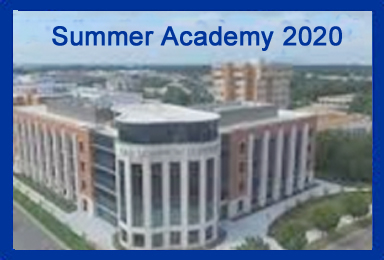 Summer Academy NADSFL 2020